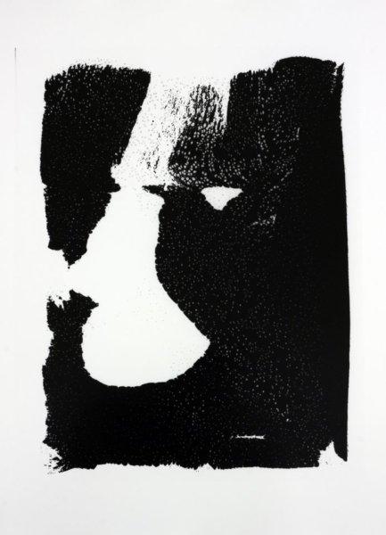 Mathieu Harel-Vivier